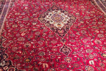 Kashan carpet, Western owned pet and smoke free house